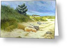 Windswept Sands Greeting Card