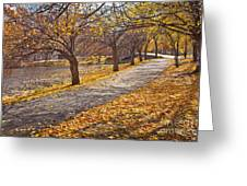 Windswept Walk Greeting Card by Susan Cole Kelly
