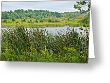Windy Day In Campground In Saginaw-minnesota Greeting Card