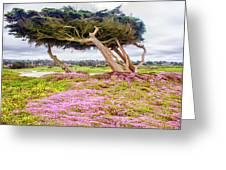 Windy Tree Greeting Card