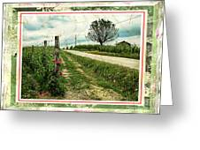 Wine And Roses. Brandini Winery Greeting Card
