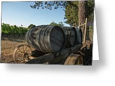 Wine Barrels At Vineyard Greeting Card