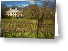 Wine Country California 1 Greeting Card