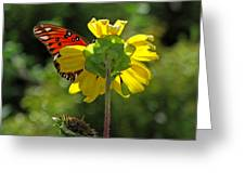 Wing Flower Greeting Card
