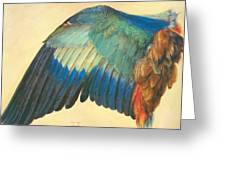 Wing Of A Blue Roller 1512 Greeting Card