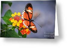 Winged Tiger Greeting Card