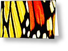 Wings Of A Monarch Butterfly Abstract Greeting Card