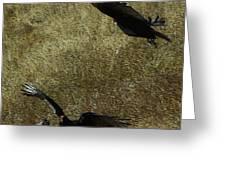 Wings Spread Wide Greeting Card