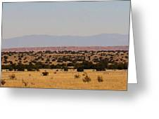 Winslow Arizona Greeting Card