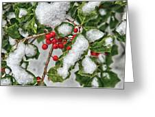 Winter - Ice Coated Holly Greeting Card