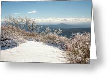 Winter Above The Land Greeting Card