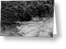 Winter Abstract Black And White Greeting Card