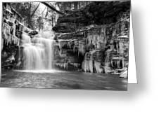 Winter At Big Falls  Greeting Card