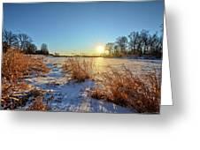 Winter At Mayne's Greeting Card