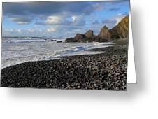 Winter At Sandymouth Greeting Card