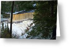 Winter At Tahquamenon Greeting Card