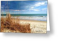Winter At The Beach Is Still Beautiful Greeting Card