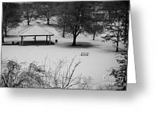 Winter At The Park Greeting Card