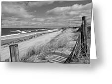 Winter Beach View - Black And White Greeting Card