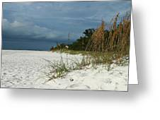 Winter Beauty At The Beachside Greeting Card