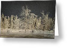 Winter Begins Greeting Card by Lois Bryan