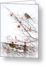 Winter Birds 1 Greeting Card
