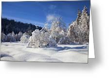 Winter Blanket Greeting Card