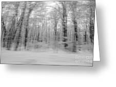 Winter Blast Greeting Card