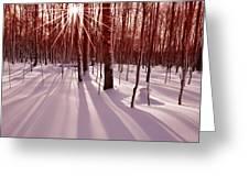 Winter Bling Greeting Card