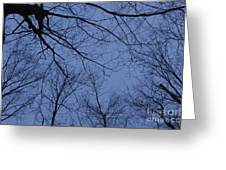 Winter Blue Sky Greeting Card