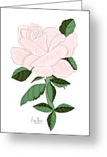Winter Blush Rose Greeting Card