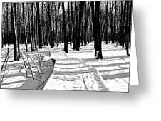Winter Boardwalk In Black And White Greeting Card