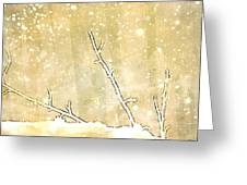 Winter Born Greeting Card