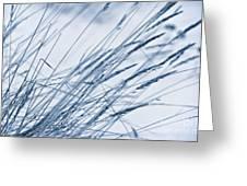 Winter Breeze Greeting Card