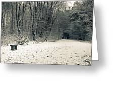 Winter Bridleway Greeting Card by Andy Smy
