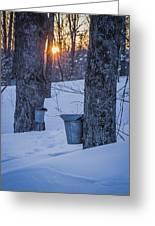 Winter Buckets Greeting Card
