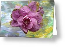 Winter Cabbage Greeting Card