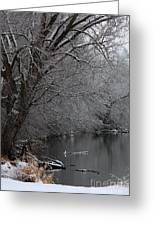 Winter Calm Greeting Card