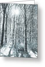 Winter Cold Greeting Card