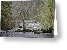 Winter Colors On The Klawock Greeting Card