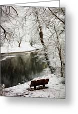 Winter Contemplation Watercolor Painting Greeting Card