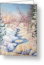 Winter Creek 1  Greeting Card