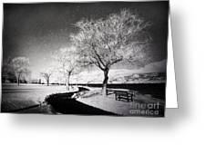 Winter Darkness Greeting Card