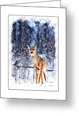 Winter Deer 1 Greeting Card
