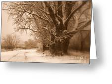 Winter Dream Greeting Card