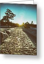 Winter Driveway Sunset Greeting Card