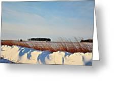 Winter Dunes Greeting Card