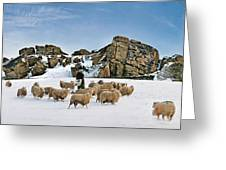 Winter Feed Almscliff Crag. Greeting Card