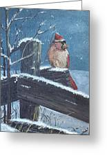 Winter Female Cardinal Greeting Card