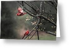 Winter Flight  Greeting Card by Kim Loftis